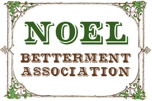 Noel Betterment Association